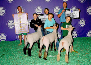 14-Overall-Points-Champion-Michigan-Club-Lamb-Association-Youth-Challenge-Trent-George
