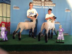 14-Reserve-Champion-4H-Market-Lamb–Missouri-State-Fair-Stetson-Wiss