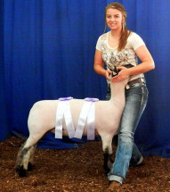 14-Reserve-Champion-Commercial-Ewe-Tennessee-State-Fair-Luci-Allen