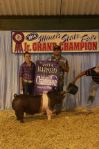 14-Reserve-Champion-Hampshire-Barrow-Illinois-State-Fair-Maddey-Tebbe