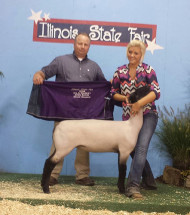 14-Reserve-Champion-Market-Ewe-&-4th-Overall-Market-Lamb-Illinois-State-Fair-Shelby-DeOrnellas