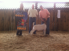 14-Reserve-Grand-Champion-Overall-Points—PCLA-Show-Circuit-Jake-Ritenour