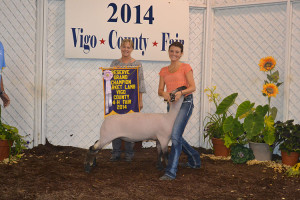 14-Reserve-Grand-Champion-Vigo-County-4-H-Fair-Rachel-Sivertson