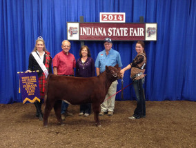 14-Reserve-Jr-Calf-Champion-Indiana-State-Fair-Katie-Snyder