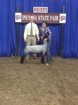 14-Reserve-Natural-Colored-Indiana-State-Fair-Brooke-Bowen