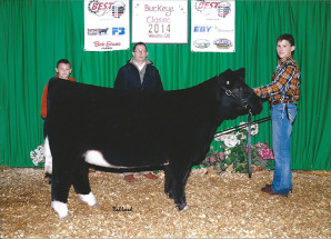14-Reserve-Overall-Crossbred-Heifer-Ohio-BEST-Program-Points–Jordan-Johnson