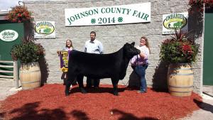 14-Supreme-Beef-Heifer-Johnson-County-Fair-Hanna-martin