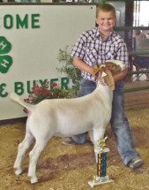 14-Supreme-Boer-Goat-Overall-Vanderburg-County-4H-Show-Caleb-Welte
