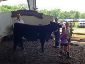 14-Supreme-Breeding-Heifer-Seneca-County-Fair-Caden-Gurney