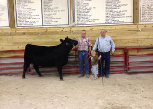 14-Supreme-Champion-Heifer-Meade-County-Fair-Clayton-Bell