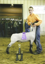 14-Supreme-Champion-Lamb-Hillsdale-County-Fair-Kade-Shiery