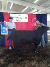 14-Supreme-Champion-Overall-Darke-County-Fair-Chance-Derossett