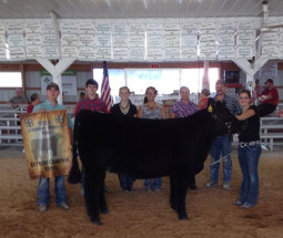 14-Supreme-Heifer-Jackson-County-4H-Michala-Nierman