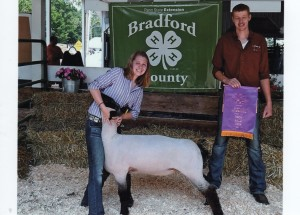 Alane Neal- Champion Lamb Troy PA Fair