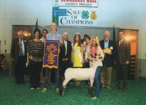 Allison Breeze- Reserve Champion Market Lamb – KY State Fair