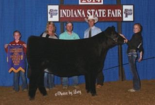 Auburn Harvey- Champion Maintainer Female – IN State Fair