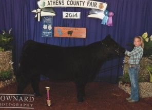 Audrey Ross- Champion Market Steer- Athens County OH Fair