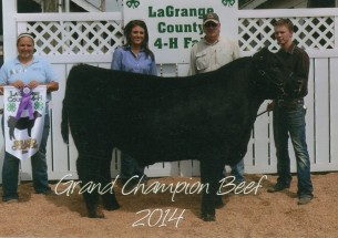 Austin Buonocore- Champion Steer- La Grange Co IN Fair