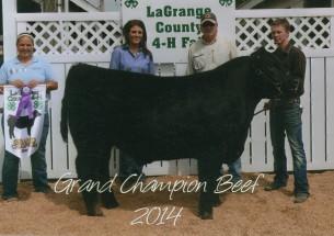 Austin Buonocore- Champion Steer- La Grange Co IN Fair