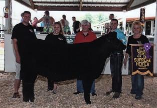 Brooks Weszely- Champion Heifer- Sullivan Co IN Fair