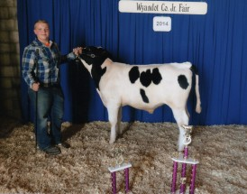 Bryce O'flaherty- Champion Dairy Feeder Calf- Wyandot Co OH Fair