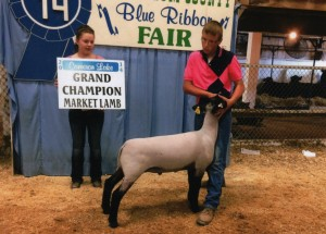Cameron Lake- Champion Lamb- Muskingum Co OH Fair