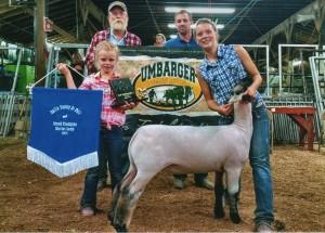 Champion Market Lamb Gallia Co OH Fair