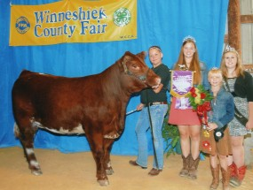 Elizabeth Garcia-Holty- Champion Market Heifer- Winneshiek Co IA Fair