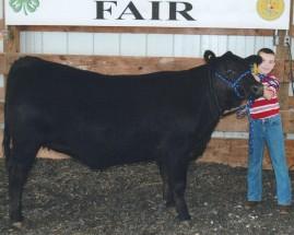 Ethan Hopkins- Reserve Champion Market Heifer- Meade County KY Fair