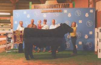 Lauren Ott- Champion Steer- Huron Co OH Fair