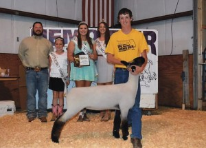 Matt Stafford- Champion Ewe- NEMO District Fair MO
