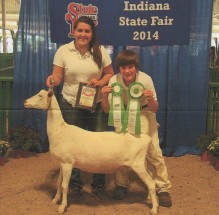Michael Potts- Reserve Champion Dairy Doe- Indiana State Fair