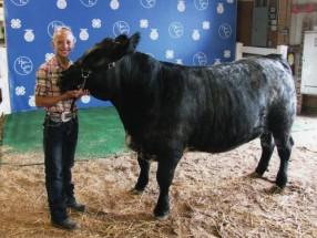 Morgan Baxter- Champion Beef Carcass Steer- Huron Co OH Fair