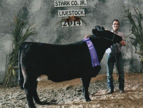 Nicholas Frank- Champion Heifer- Stark Co OH Fair