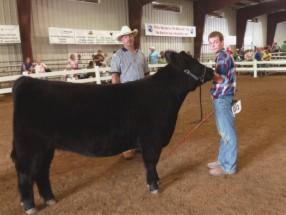 Nick McConnell- Champion Heifer- Hartford Ind OH Fair