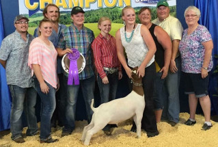 1-15-grandchampgoat-illinoisstatefair-flemingfamily