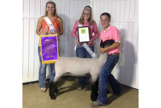15-15-grandchampmarketlamb-fayettecountyindianna-lukewilliams