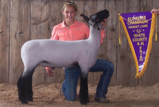 18-15-grandchampmarketlamb-whitecountyindiana-vogelfamily