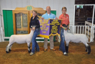 7-15-grandandreservegrandchamp-shelbycountyindiana-lawsonfamily