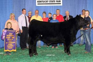 15-grandchampsteer-kentuckystatefair-chanceflach