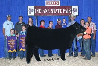 15-reserveoverallheifer-indianastatefair-warnerott