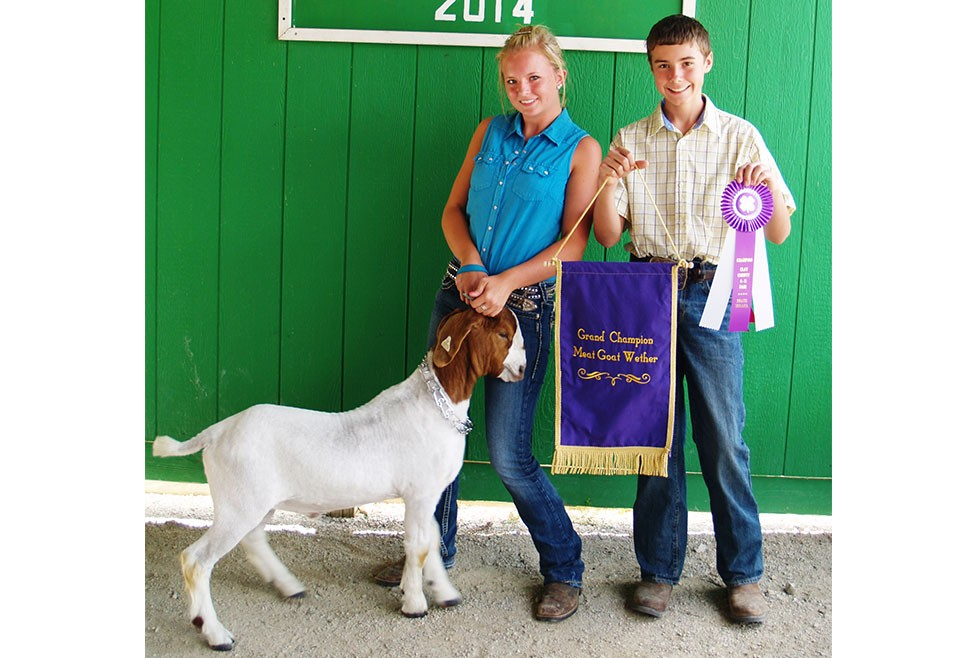 2014 Goat Winners - Umbarger Show Feeds