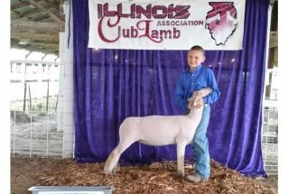 15-ChampionMarketLamb-IllinoisClubLambAssociation-BeauHowe