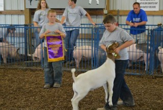 15-GrandChampionMarketGoat-BreckinridgeCountyFair-CadeDupin
