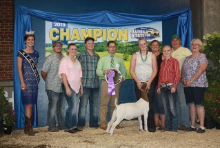 15-GrandChampionMarketGoat-IllinoisStateFair-SkylynnFleming