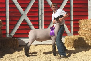 15-GrandChampionMarketLamb-ApacheCountyFair-ConnorBryan