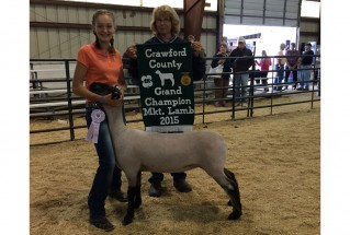 15-GrandChampionMarketLamb-CrawfordCounty-KaliRankin