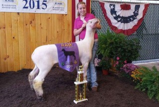 15-GrandChampionMarketLamb-RossCountyFair-HalieHensley