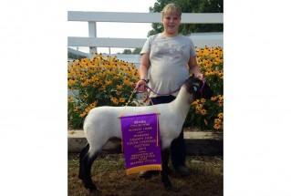 15-GrandChampionMarketLamb-WarrenCounty4HMarketLambShow-HannahNickeron