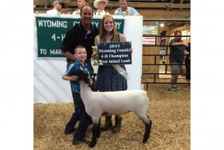 15-GrandChampionMarketLamb-WyomingCounty4HMarketLambShow-SpencerBroughton